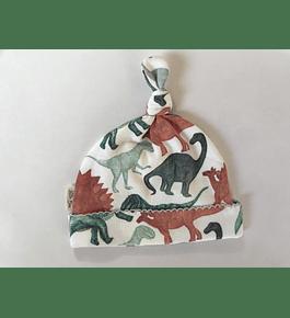 Gorrito Dinosaurs