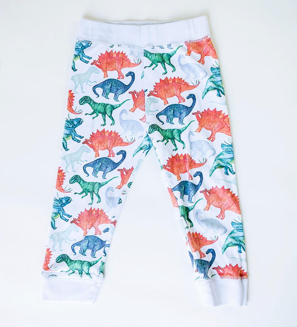 Pijama 2 piezas Largo Dinosaurs