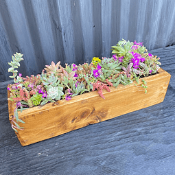 Jardinera madera 40 cm con suculentas