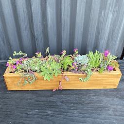 Jardinera madera 50 cm de largo con suculentas