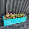 Jardinera turquesa 40 cm de largo con suculentas