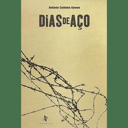 DIAS DE AÇO.