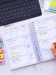 Planificador Anual Universitario
