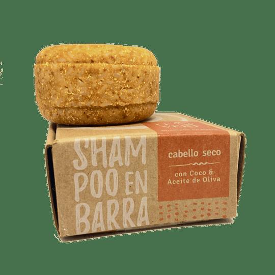 Shampoo LeVert Cabello Seco