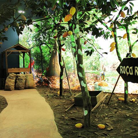 PACK VOUCHER MUSEU + LANCHE NA FÁBRICA (1 PESSOA)