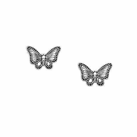 Aros mariposa monarca