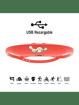 12233     bandicoot - red