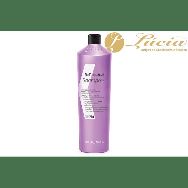 Shampoo Anti-Amarelo 1000ml