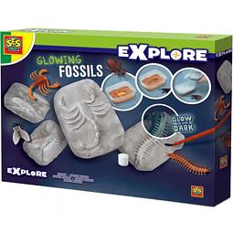 EXPLORE, FOSILES BRILLANTES Cod. 25073