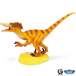 DR. STEVE - DINOSAURS COLLECTION VELOCIRAPTOR