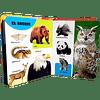 100 PALABRAS - LOS ANIMALES