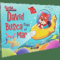 CUENTOS CON RELIEVE - DAVID BUSCA BAJO EL MAR