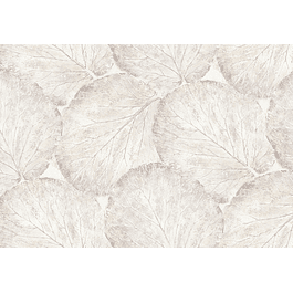 Beech Leaf White