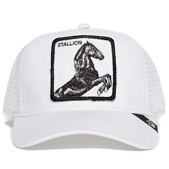 Goorin Bros Stallion - Image 1