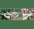 tijera de podar de jardinería