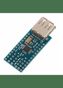 MODULO USB HOST 2.0