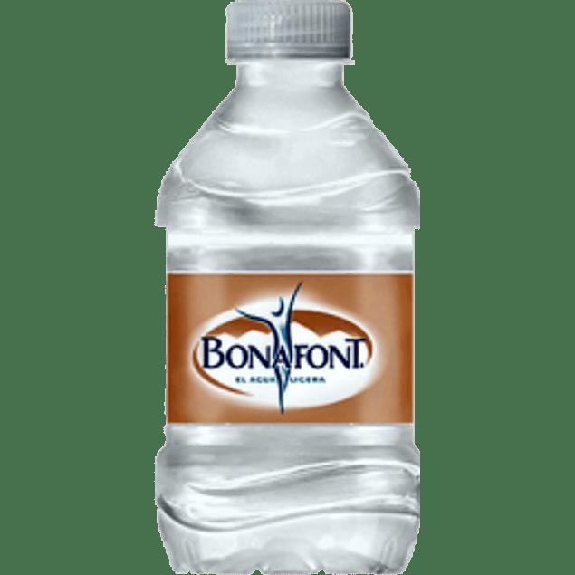 Agua natural, paquete con 12 botellas de 250 ml.