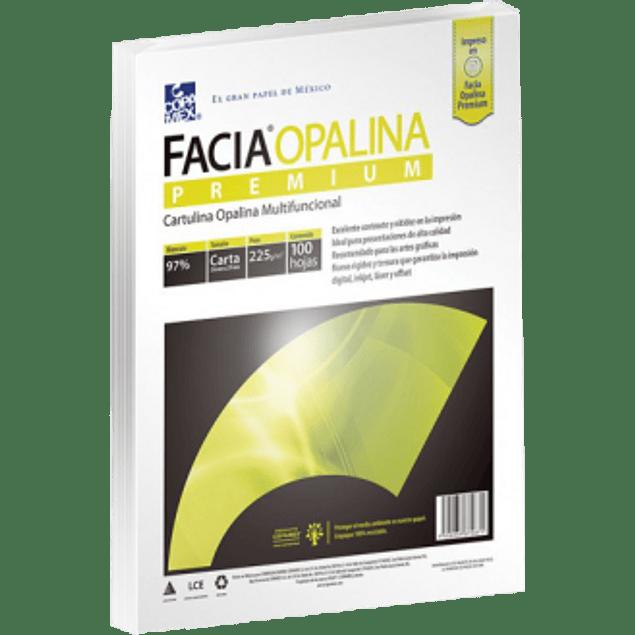 Papel Opalina Cartulina tamaño Carta 225 gramos, color blanco, paquete con 100 hojas