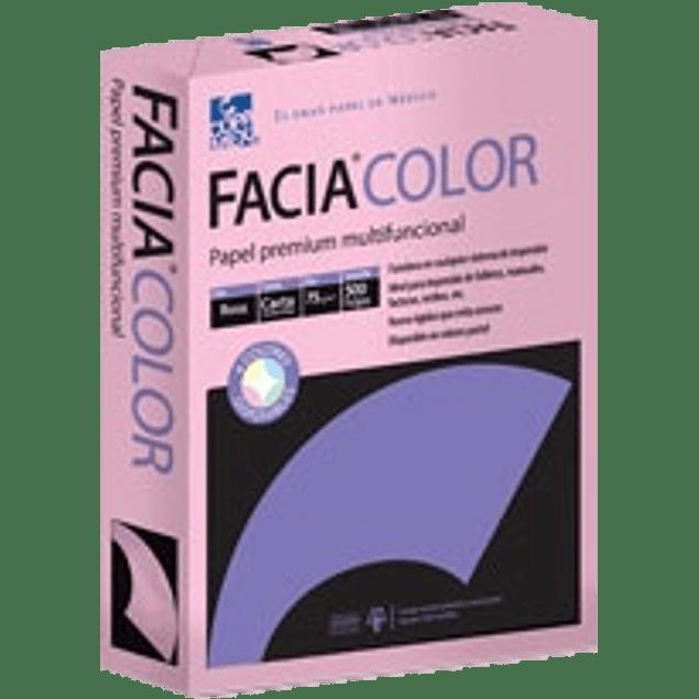 Papel color rosa tamaño carta de 75 grs, paquete de 500 hojas