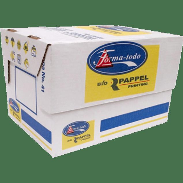 Papel Stock 15 x 11 con 3 tantos, caja con 1000 formas