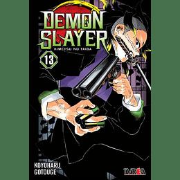 Demon Slayer N°13