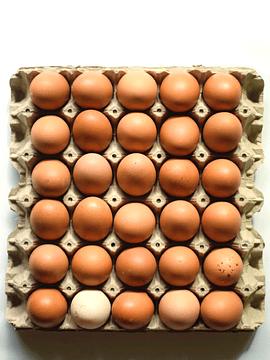 Bandeja 60 huevos