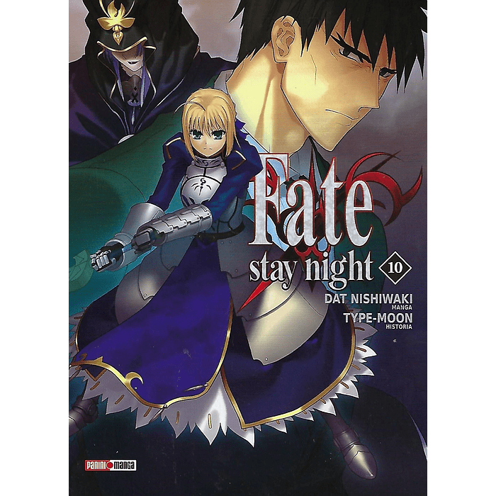 FATE STAY NIGHT 10