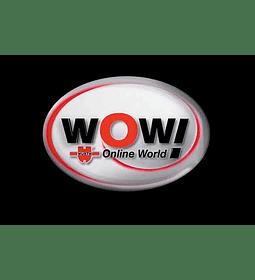 WOW Wurth Online World 2017