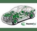WorkShop Data Haynes Pro 2018