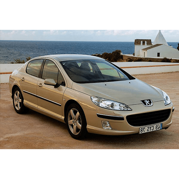 Manual De Taller Peugeot 407 (2004-2010) Inglés