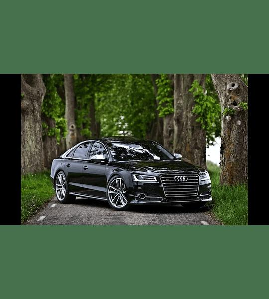 Manual De Taller Audi A8 / S8 (d4 / 4h) 2010-2017 inglés