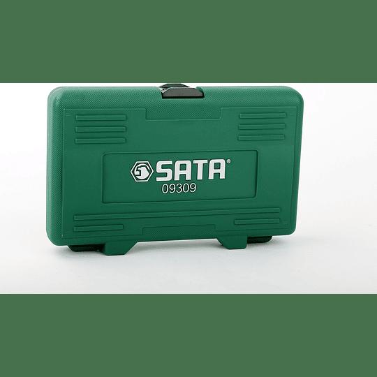Juego 6 pcs destornilladores PL-PH 09309 Sata