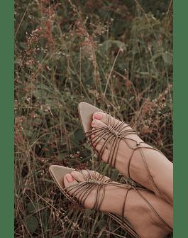 Camellia flats