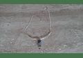 Collar de plata con punta de piedras de los 7 chakras