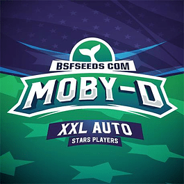 Moby-D XXL Auto X4 - BSF Seeds