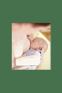 Relactador de leche materna