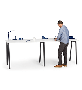 Standing Single Desk for 2