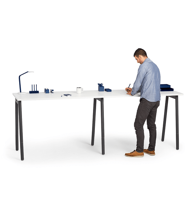 Standing Single Desk for 2