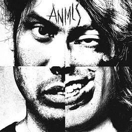 CD Anmls - Anmls
