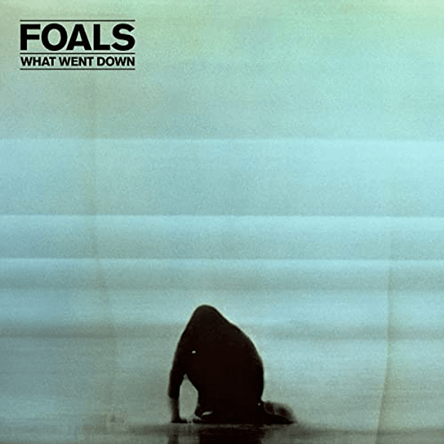 CD + DVD Foals - What Went Down
