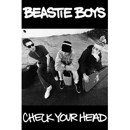 Poster Beastie Boys Check Your Head