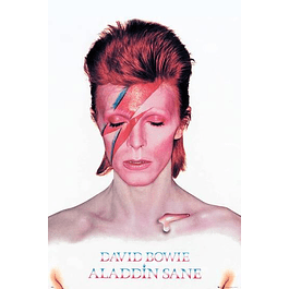 Poster David Bowie Aladdin Sane