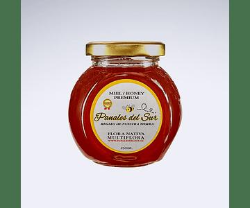 Miel Organica Natural Multifloral Panales del Sur