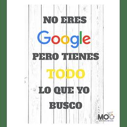 """Cuadro de PVC """"No eres Google"""""""
