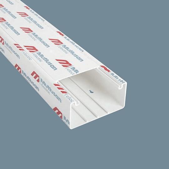 Canaleta 100x50 (2 mts)