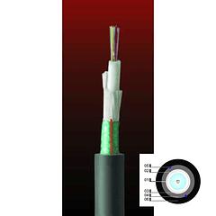 Cable Fibra Óptica 12x10 DSP01- TIA 598 / G652D - 10G