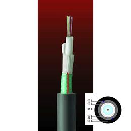 Cable Fibra Óptica 12x10 DSP01- TIA 598 / G652D - 10G 1mts