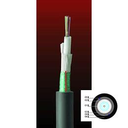 Cable Fibra Óptica 12x50 DSP01- TIA 598 / OM3