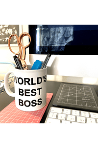 WORLD'S BEST BOSS / THE OFFICE