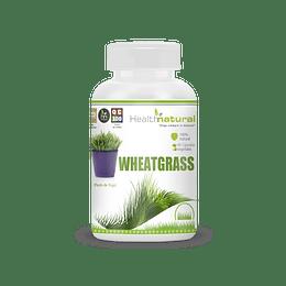 WHEATGRASS (90 Cáps. Vegetales/500mg)